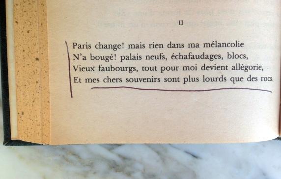 Charles Baudelaire Le Fleurs du Mal Le Cygne Poetry Literature