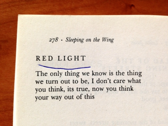 Poetry Red Light LeRoi Jones Literature Writing
