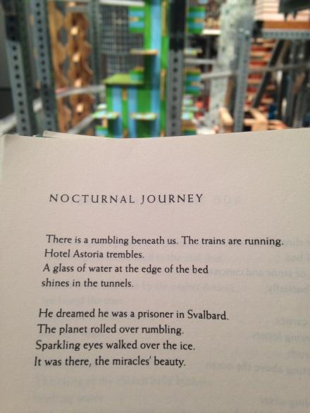 Tomas Transtromer Chris Burden Metropolis Poetry Art