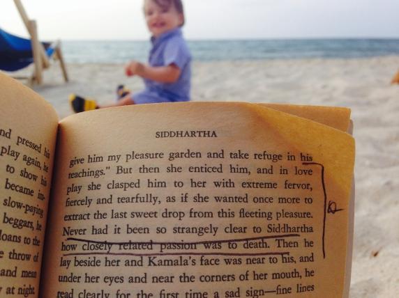 SIddartha Herman Hesse Literature Passion Death
