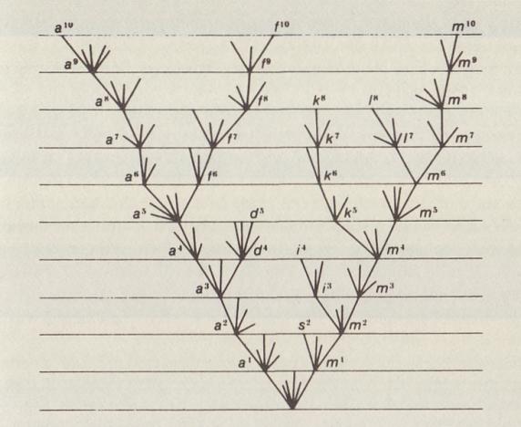 Charles Darwin Origin of Species History Nature