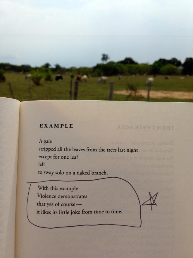 Example Wislawa Szymborska Poetry